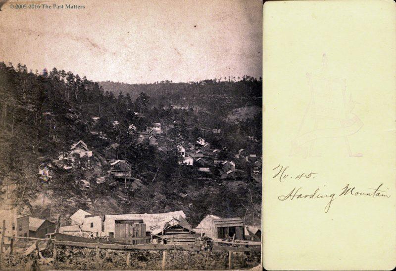A view of Harding Mountain in Eureka Springs, Arkansas, no. 45, taken by F. F. Fyler circa 1875.